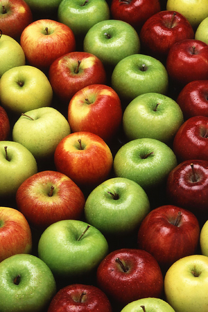 Green Apple Varieties http://www.holyrootfarm.com/HRF_Varieties.html
